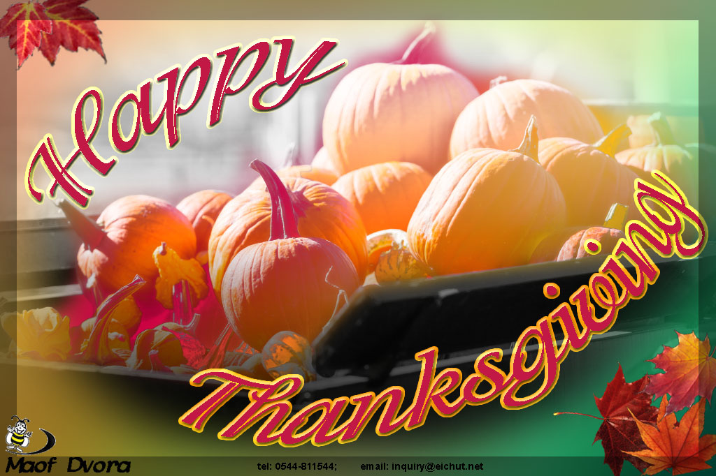 Greeting card for Thanksgiving 2015